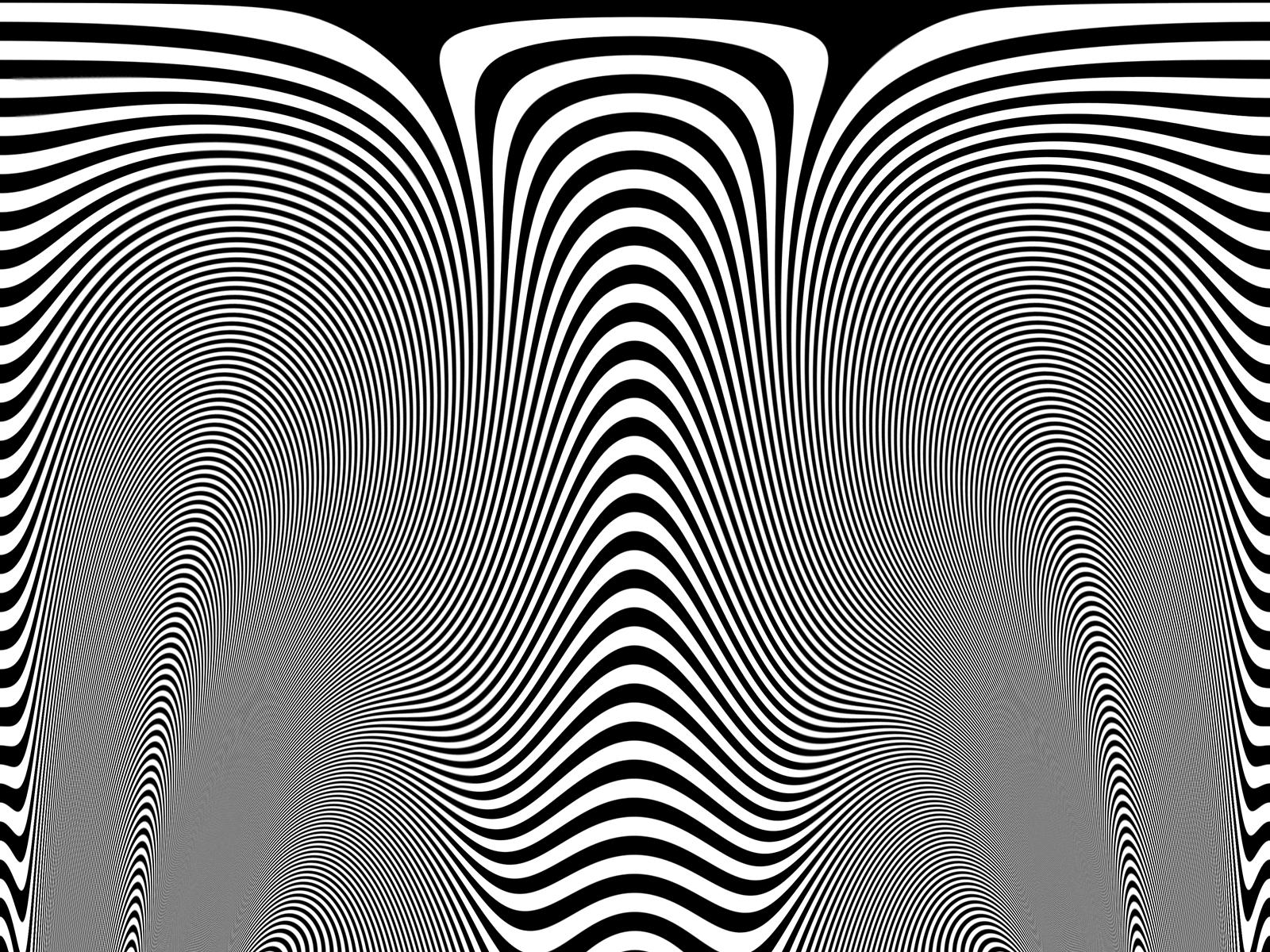 Zebra skin - photo#26