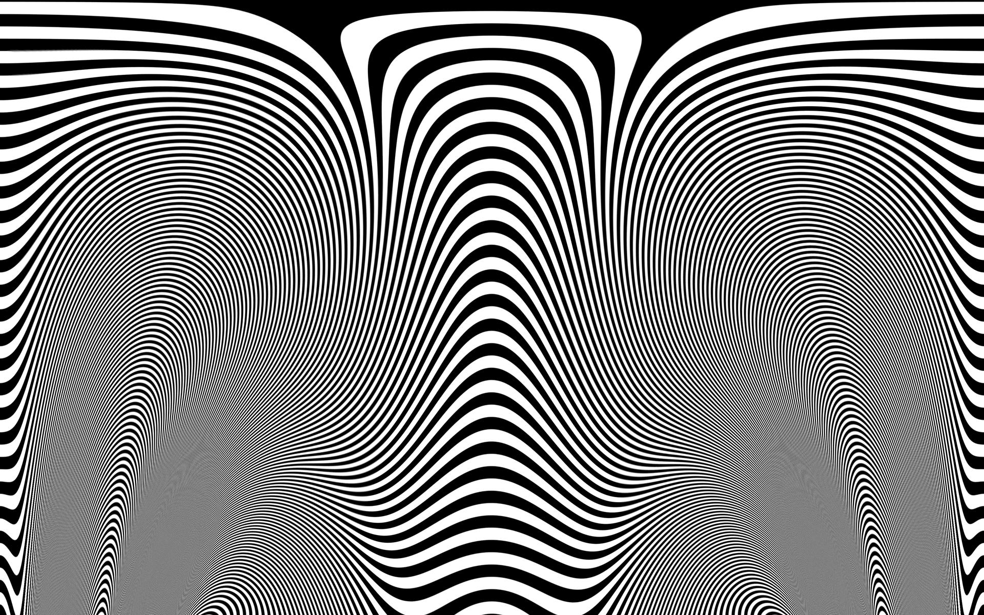 Zebra Skin 1920 x 1200  546k Zebra Skin Wallpaper